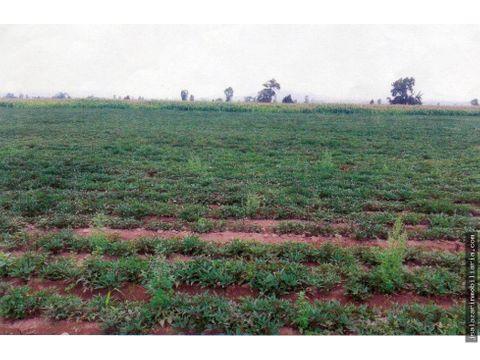 terreno agricola 20257m2 en quilmana canete