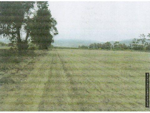 terreno agricola 48 has el hatillo chancay km 99 pan norte