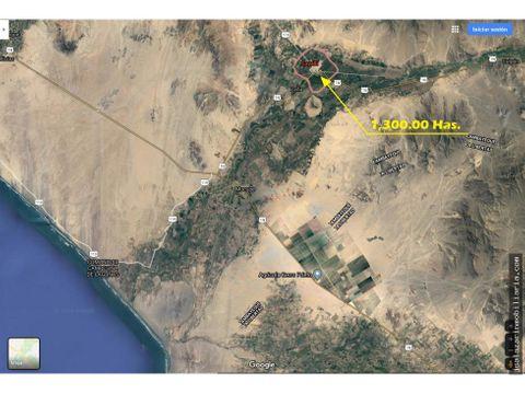 terreno agricola 1300 has cayalti lambayeque