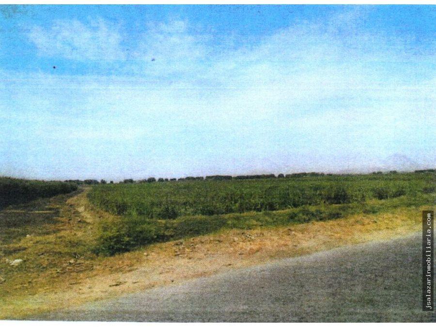 terreno agricola los potreros 628229 has valle moche trujillo