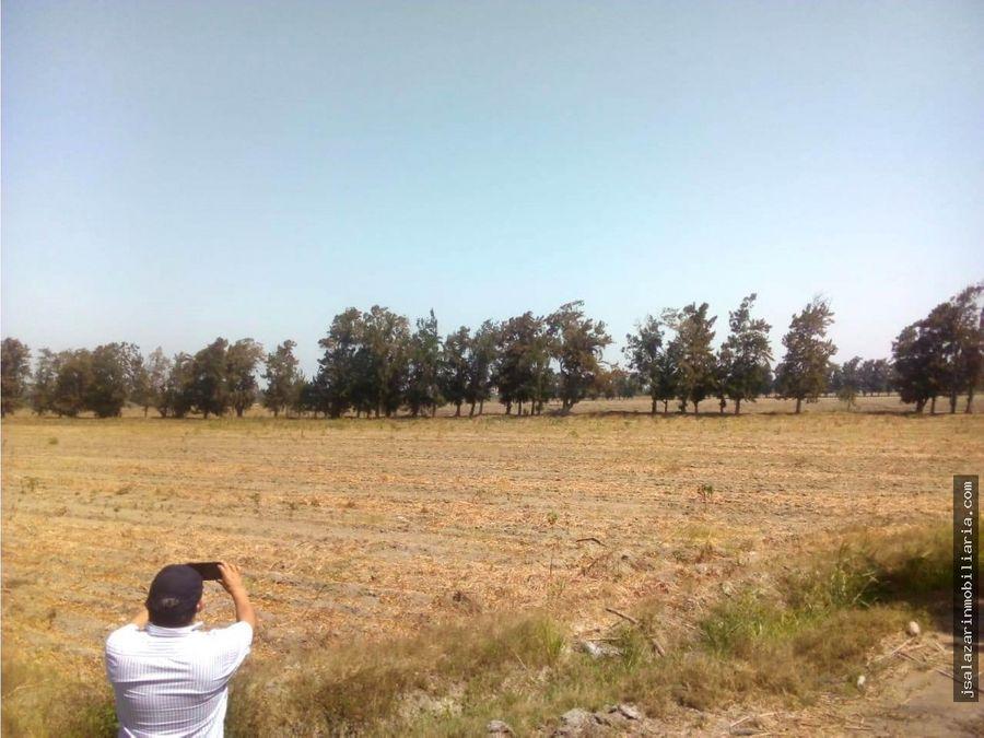 terreno neto agricola 50 has vegueta huaura lima