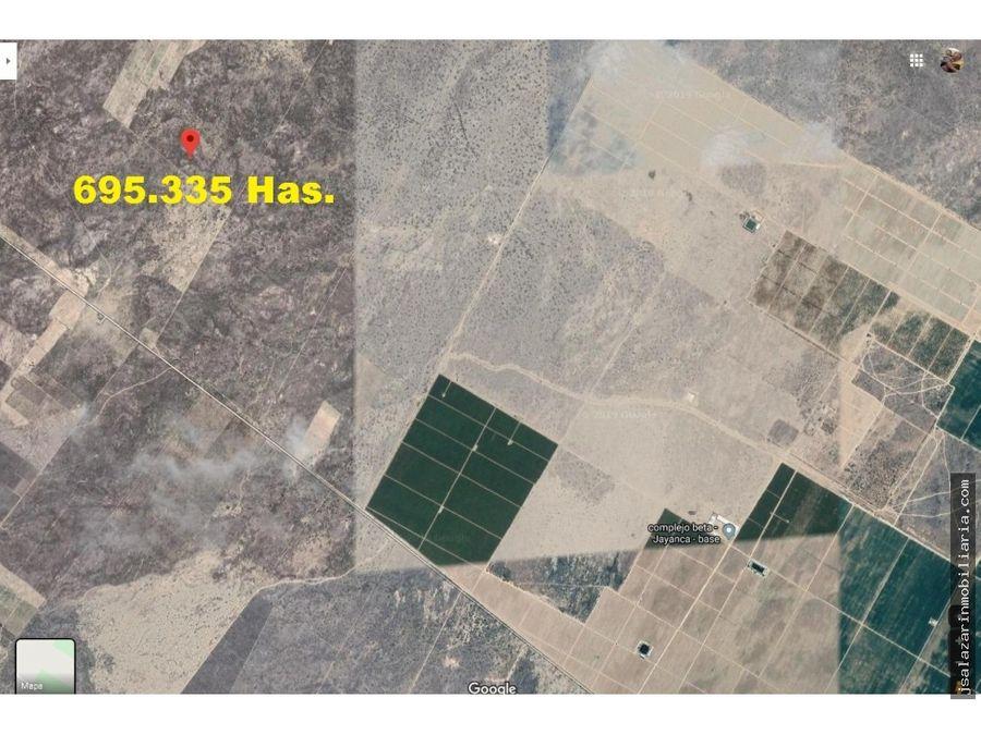 terreno agricola 695335 has valle la leche jayanca lambayeque