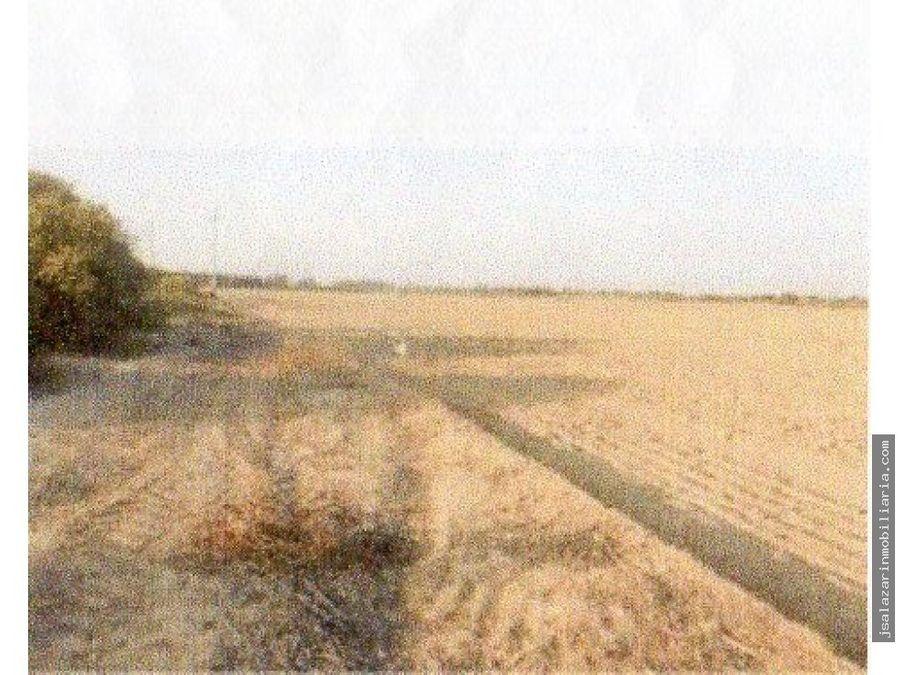 terreno agricola 18556 has motupe lambayeque