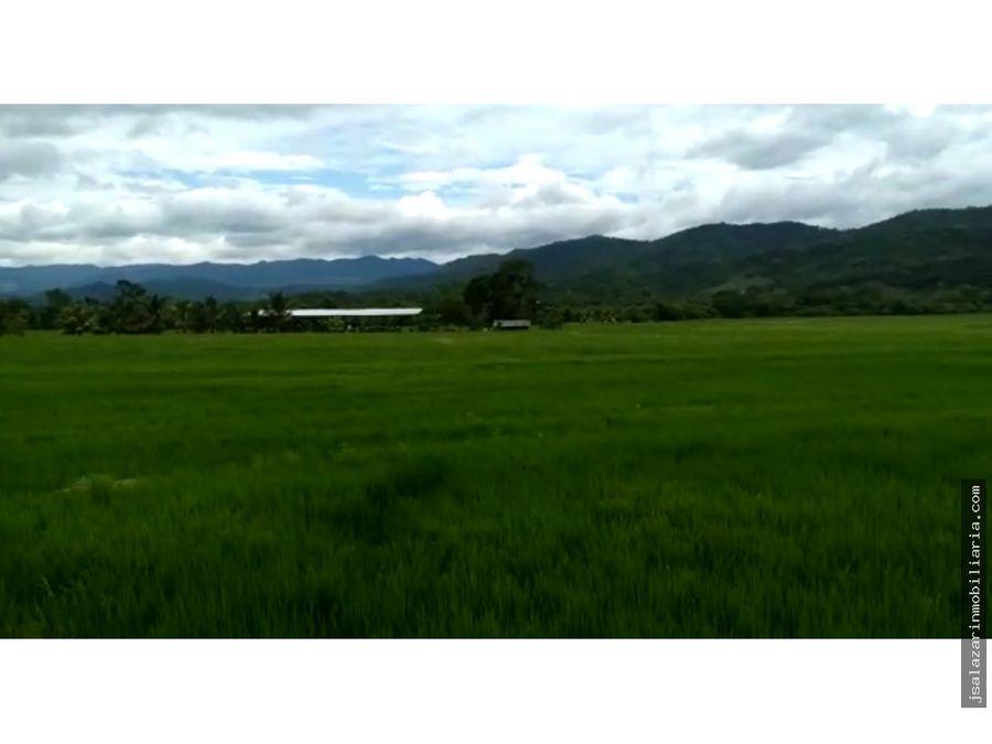 terreno agricola 320472 has en el distrito juan guerra san martin
