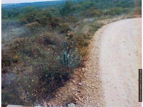 venta terreno agricola la hoya 405579 has jaen cajamarca