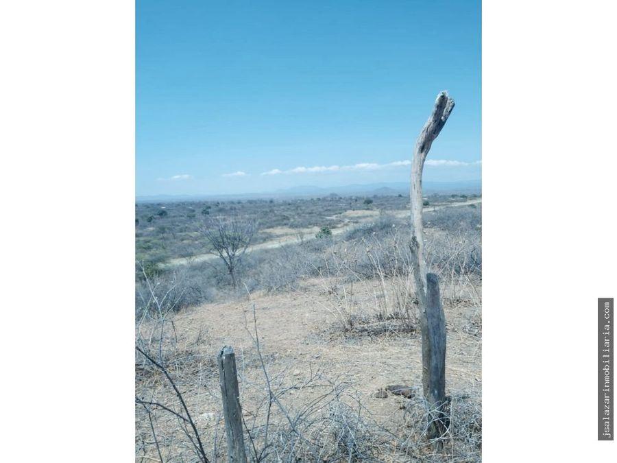 terreno agricola fundo cabreria 14851 has lancones piura