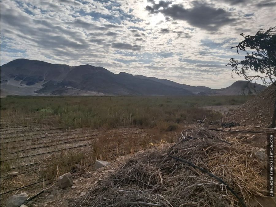 terreno agricola 160 has pacasmayo la libertad