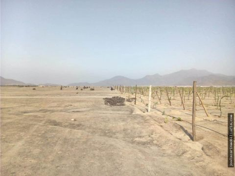 terreno en expansion urbana 450 has fundo huerto margareth huaral