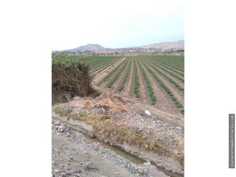 terreno agricola 24 has cerca del megapuerto chancay huara lima