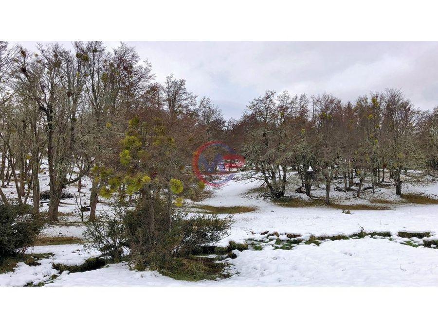 parcelas 5000 m2 en balmaceda coyhaique