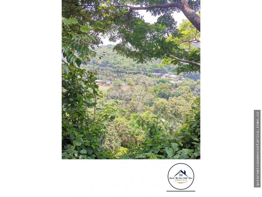 amplio terreno con uso de suelo mixto poas de alajuela