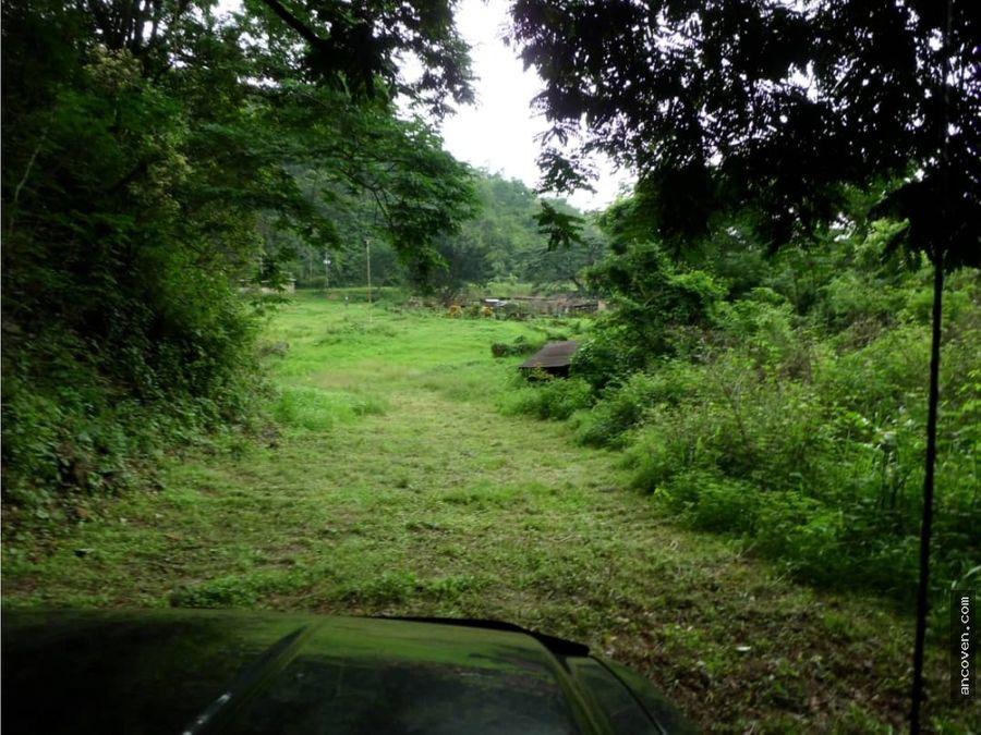 ancoven premium vende terreno colinas guataparo anteproyecto aprobado
