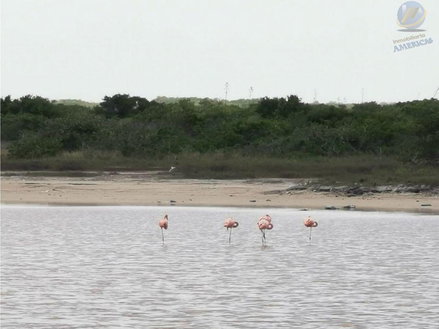 telchac puerto orilla playa
