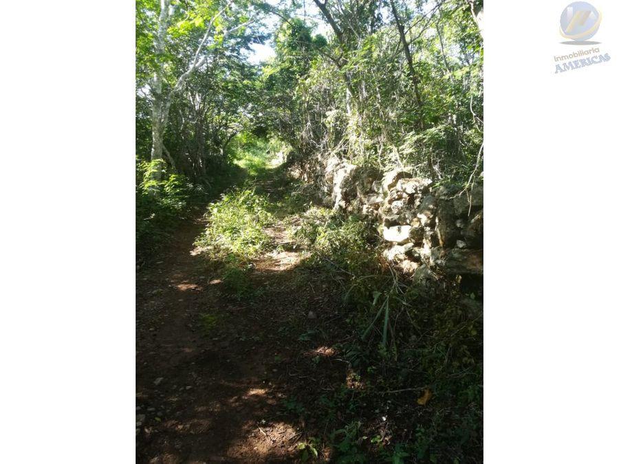 gran oportunidad de inversion en yucatan terreno de 72 hectareas