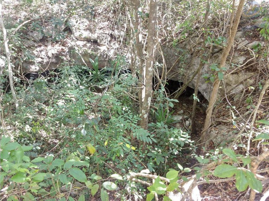 rancho al oriente de yucatan en venta con 878hectareas