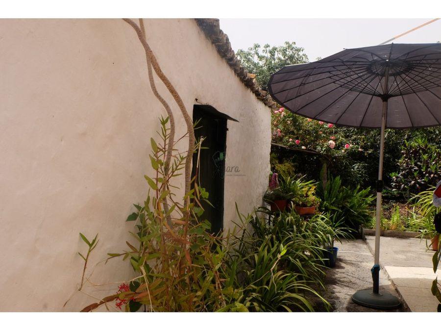 finca con 2 casas y huerto de cultivo de aguacates