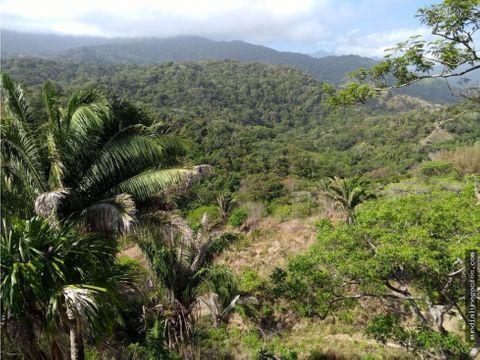 venta lote cerca al tayrona land for sale in santa marta hg0031