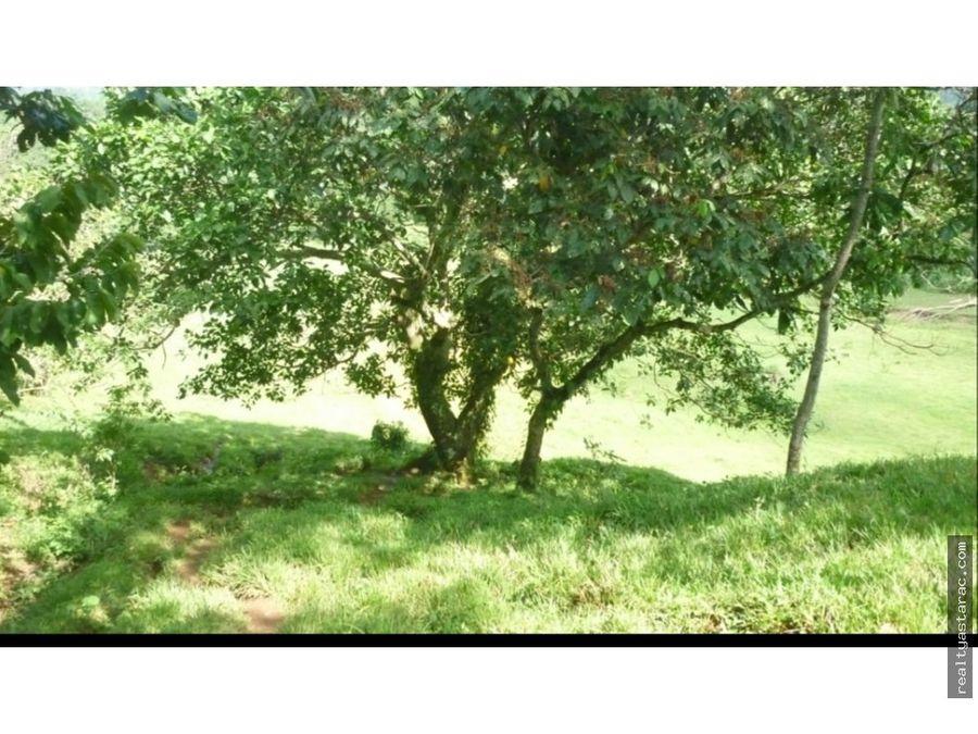 terreno en san antonio sacatepequez san marcos
