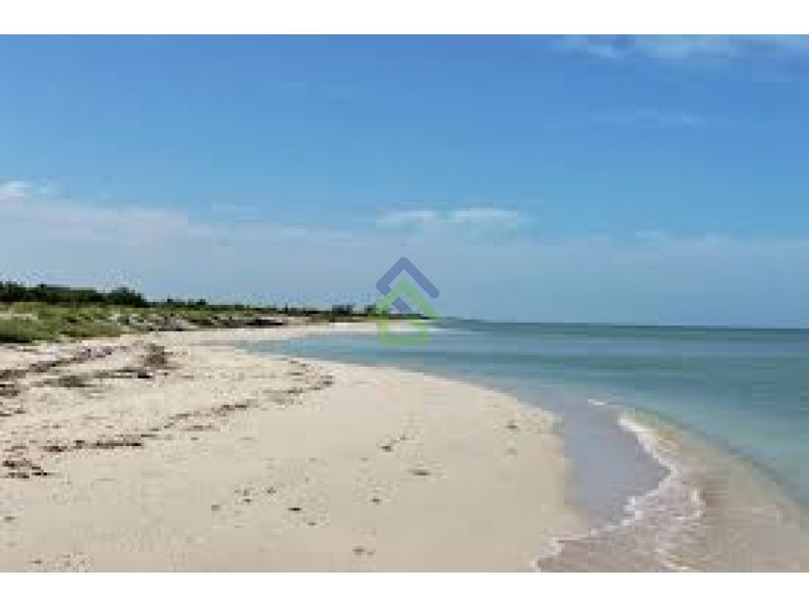 terreno de playa en celestun