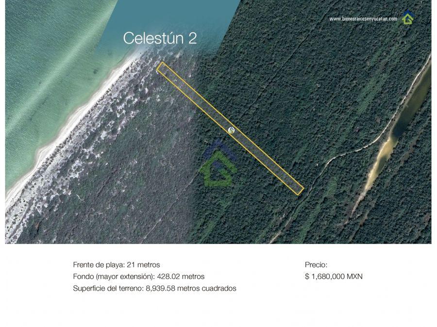 terrenos de playa frente al mar en celestun