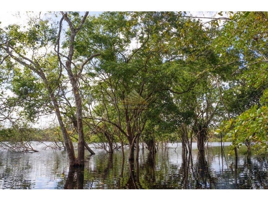 venta lotes ecoturisticos ruta holbox quintana roo