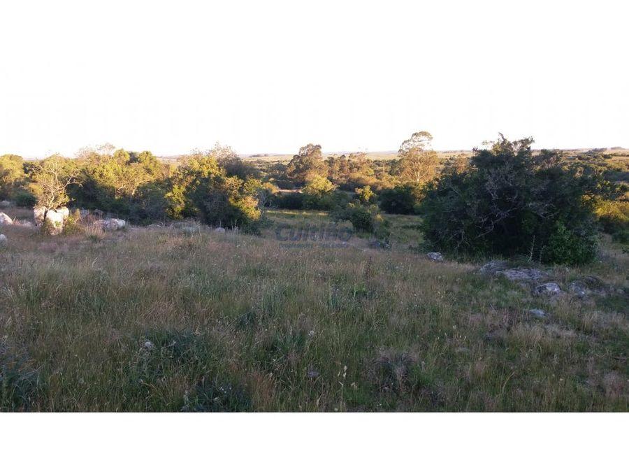 campo 61 has ganadero parte agricola lavalleja