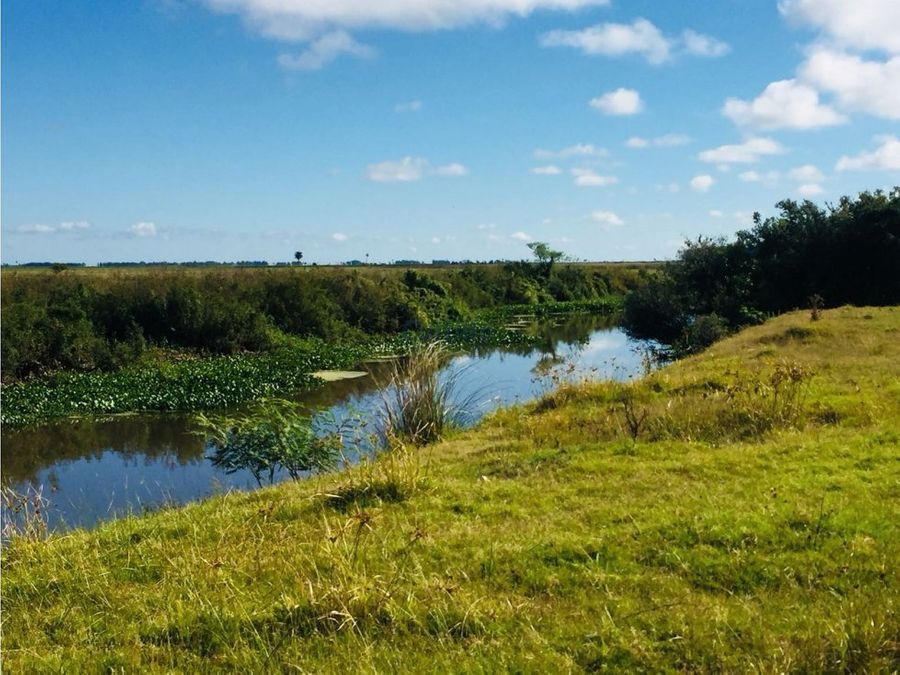 campo 576 has con costa a laguna merin rocha