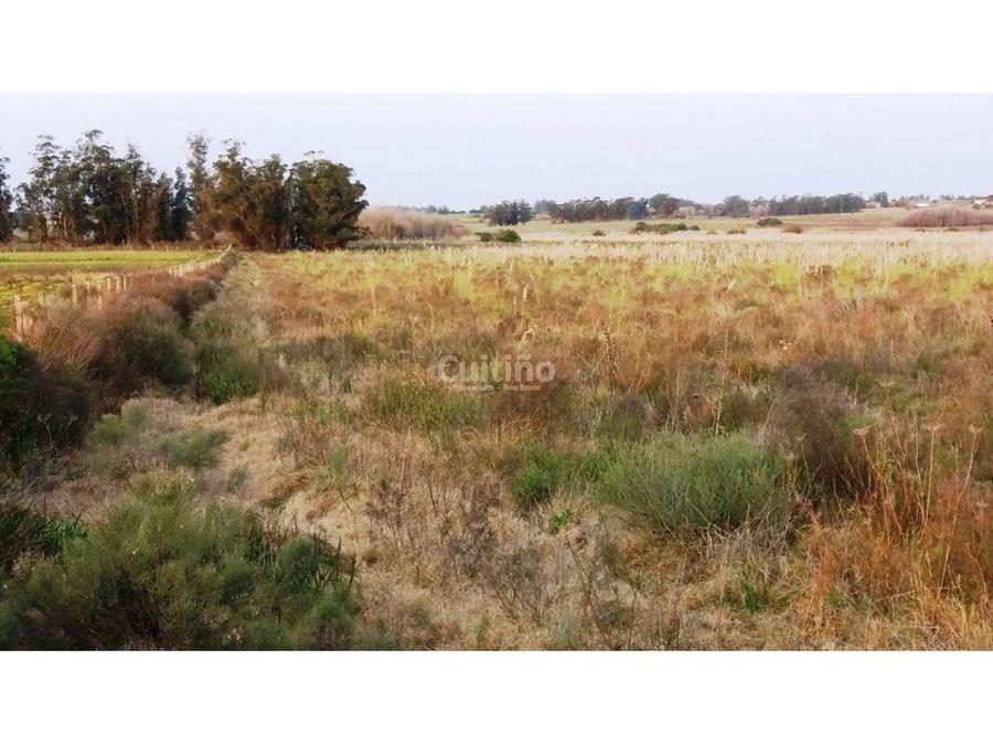 campo 57 hectareas con arroyo en canelones
