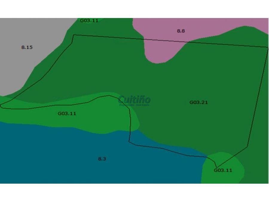 campo 144 hectareas excelente ganadero con arroyo