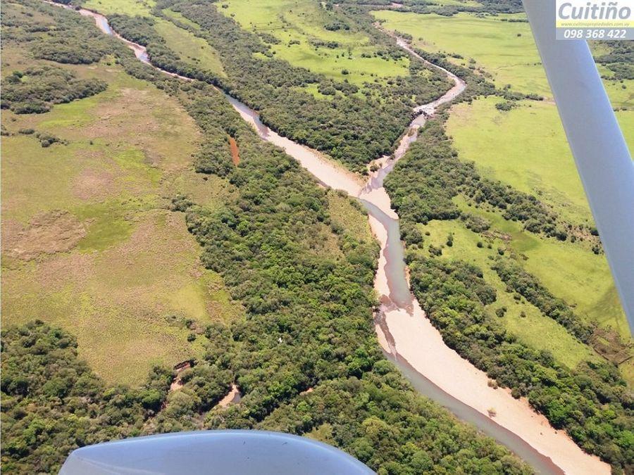 campo 6700 has campo ganadero forestal