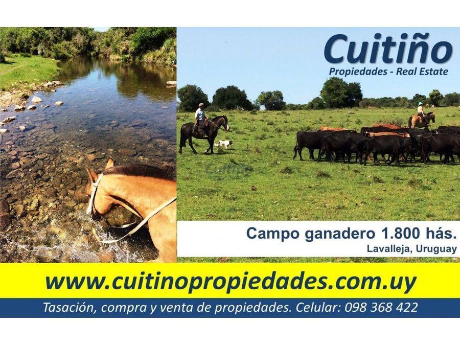 campo en venta 1800 has en lavalleja uruguay