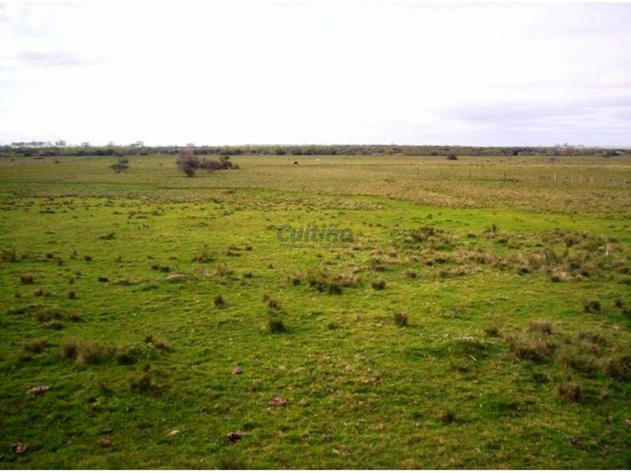 campo 60 has con rio santa lucia lavalleja