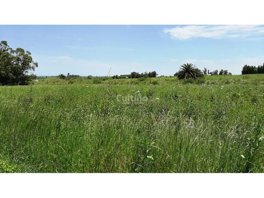 campo 3 hectareas sobre ruta 11 ideal empresas