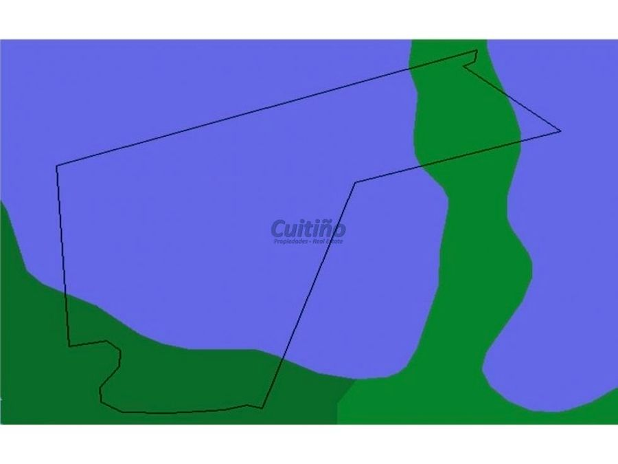 campo 92 hectareas de invernada en durazno