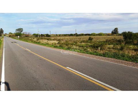 campo 4 hectareas con arroyo sobre ruta 12 en tala