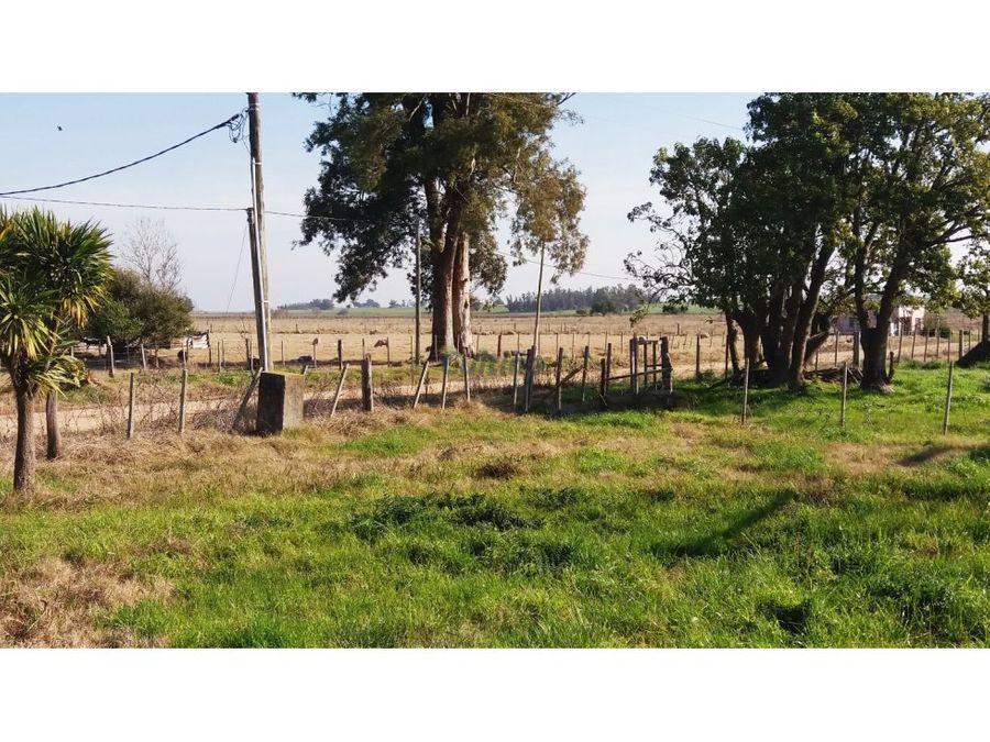 campo 3 hectareas con amplia vivienda