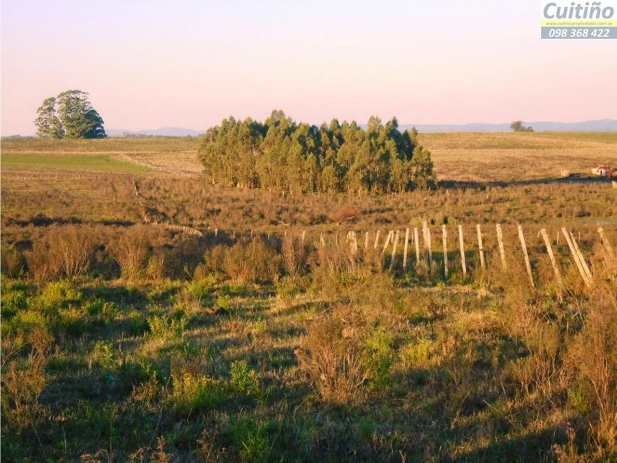 chacra 7 has agricola represa casa ute