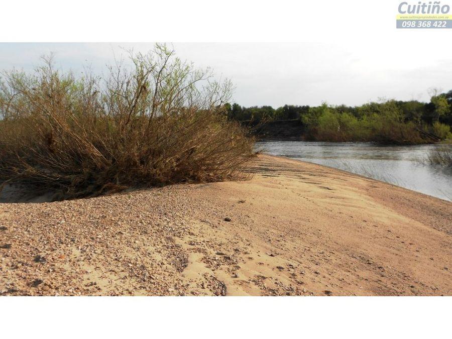 campo 75 has agricola rio y arenera lavalleja