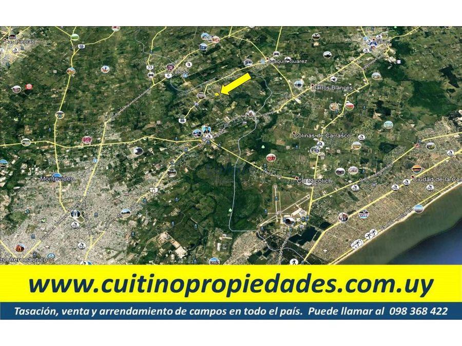 terreno 13768 mt2 ideal para galpones