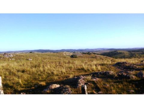 campo 31 hectareas con arroyo y monte en alferez