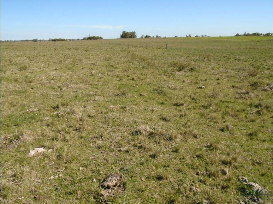 campo 23 has agricola ganadero en migues
