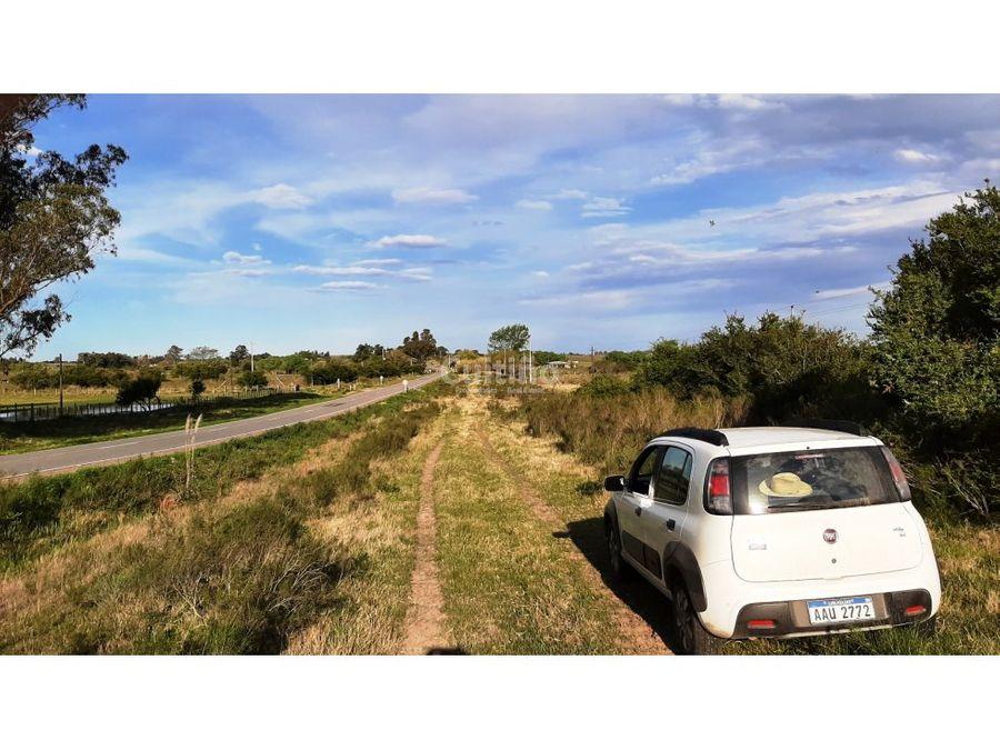 campo 5 hectareas con arroyo sobre ruta 12 en tala