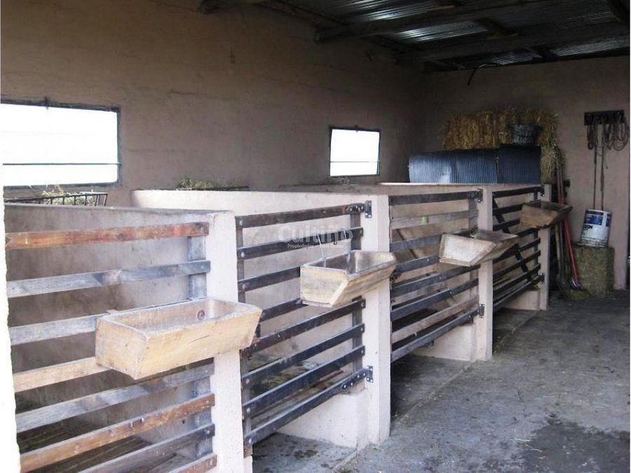 campo 53 has establecimiento armado lavalleja