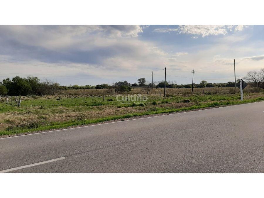 campo 3 hectareas con arroyo sobre ruta 12 en tala