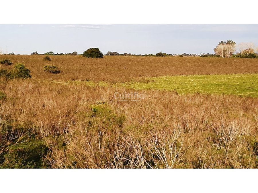 campo 17 hectareas con arroyo en tala canelones