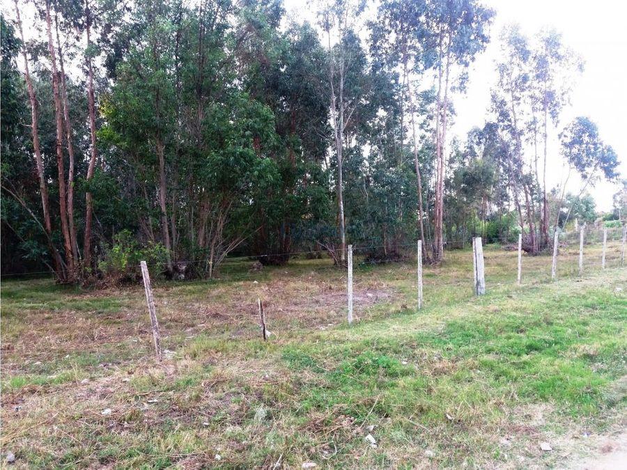 gran terreno 55544 mt2 lindero a tala