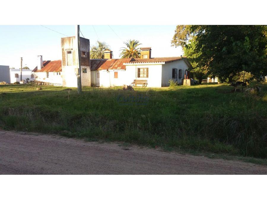chalet y 4 casas para alquiler en sauce canelones