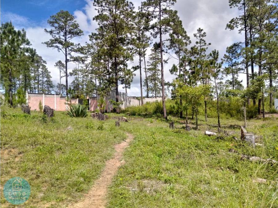 venta de terreno pinares del valle