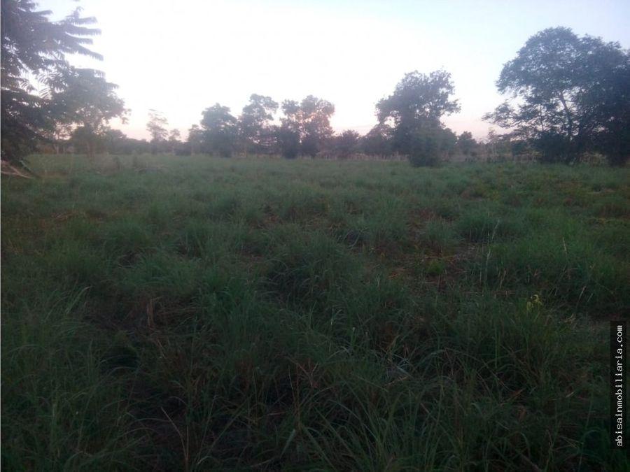 finca via planeta rica de 33 hectareas