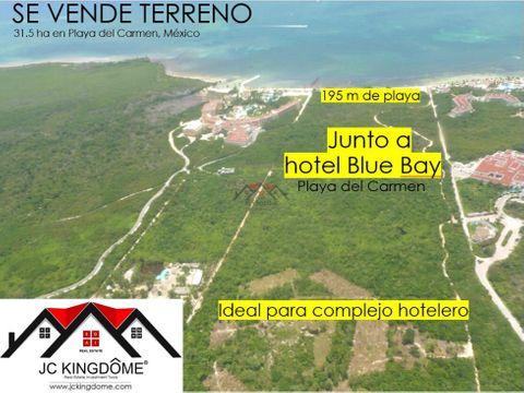vendo terreno 312 ha con 195m de playa en playa del carmen mexico